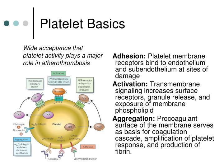Platelet Basics