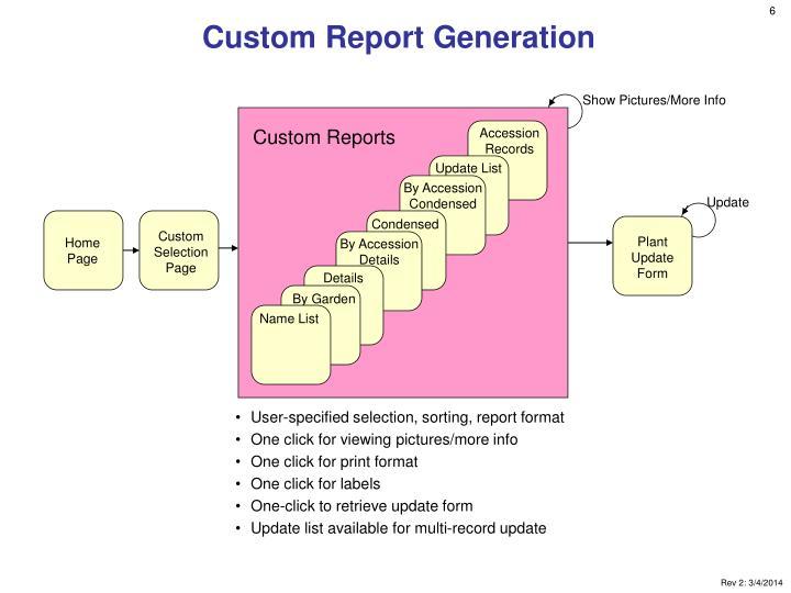 Custom Report Generation