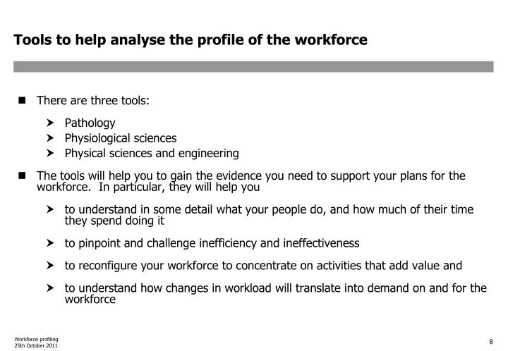 Tools to help analyse the profile of the workforce