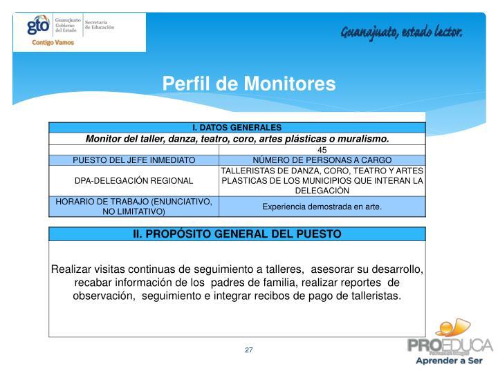 Perfil de Monitores