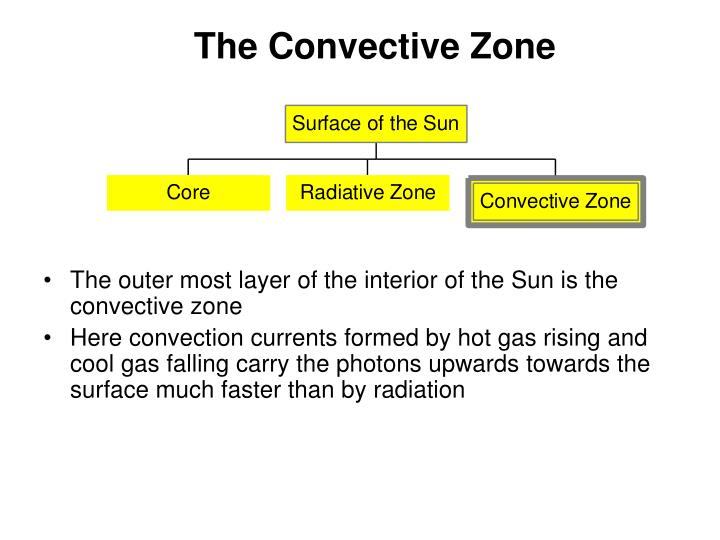 The Convective Zone