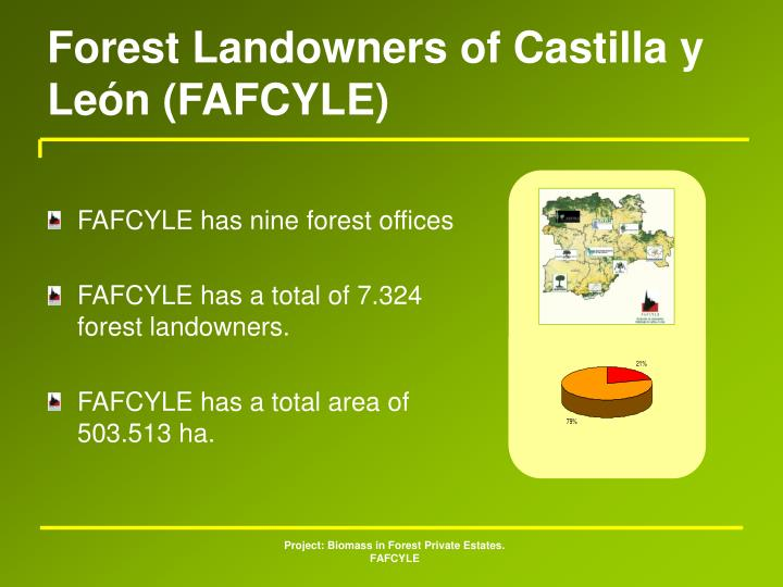 Forest landowners of castilla y le n fafcyle