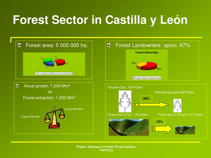 Forest Sector in Castilla y León