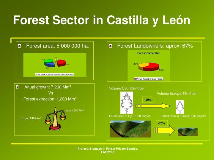 Forest Sector in Castilla y León