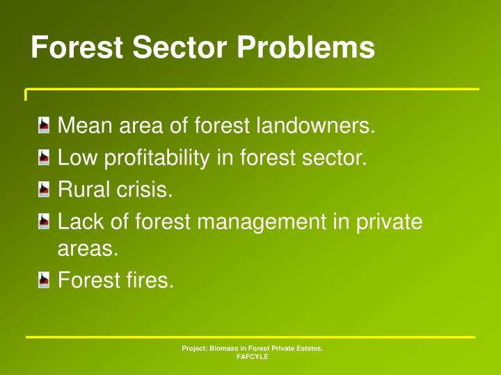 Forest Sector Problems