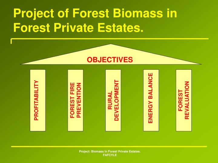 Project of Forest Biomass in Forest Private Estates.