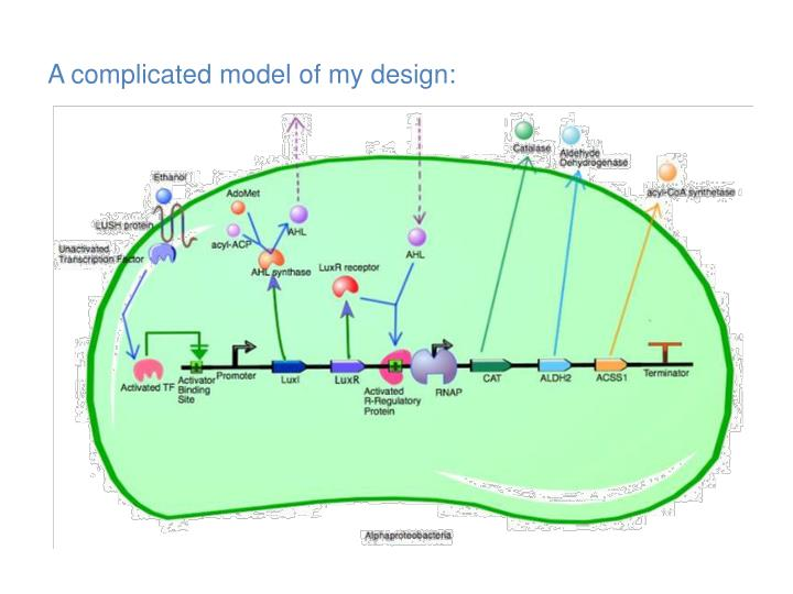 A complicated model of my design: