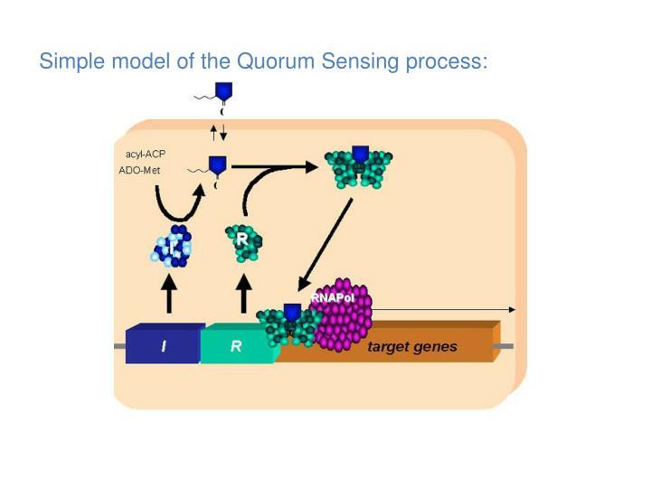 Simple model of the Quorum Sensing process: