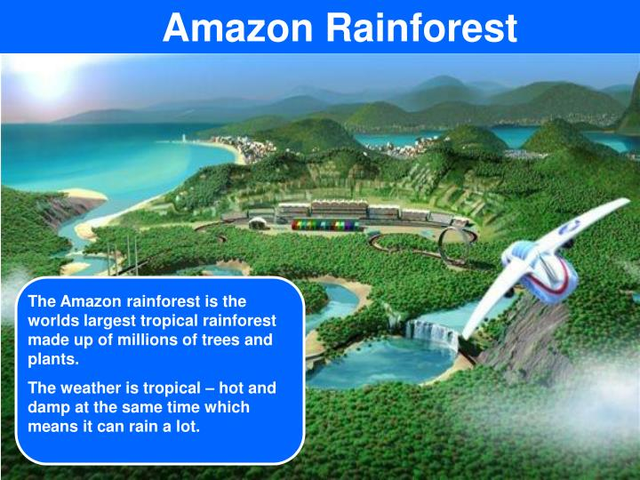 The Amazon rainforest is the worlds largest tropical rainforest made up of millions of trees and plants.
