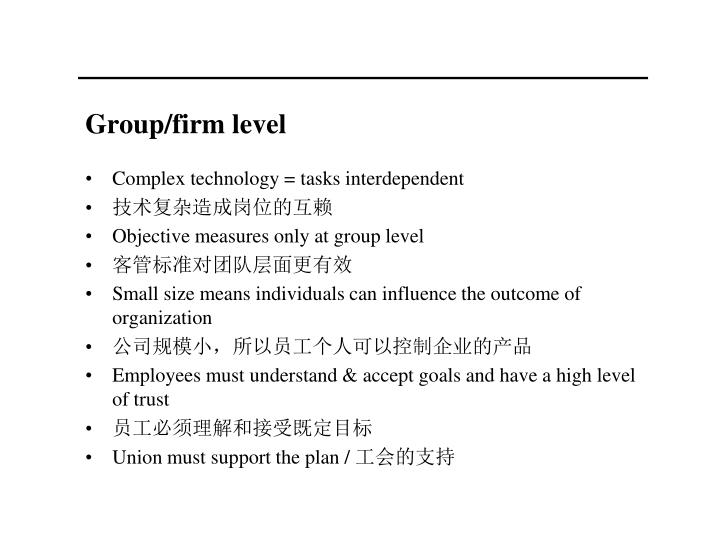 Group/firm level