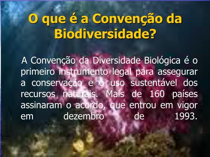 O que é a Convenção da Biodiversidade?