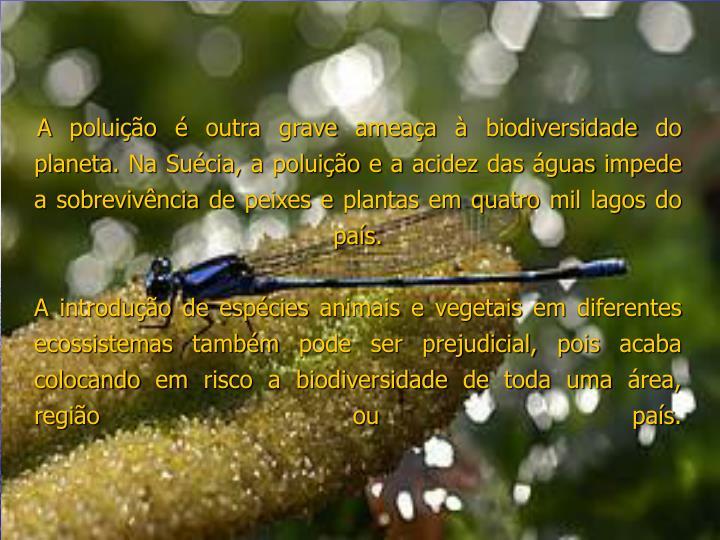 A poluição é outra grave ameaça à biodiversidade do planeta. Na Suécia, a poluição e a acidez das águas impede a sobrevivência de peixes e plantas em quatro mil lagos do país.