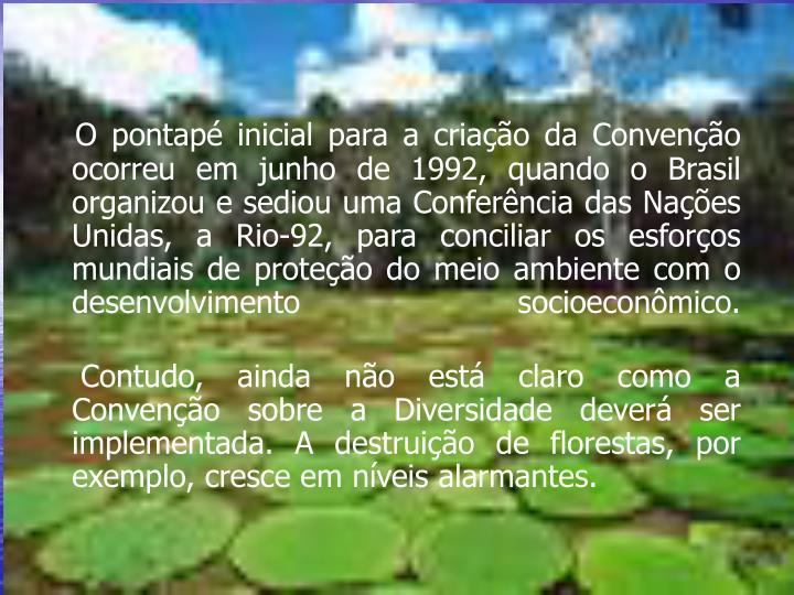 O pontapé inicial para a criação da Convenção ocorreu em junho de 1992, quando o Brasil organizou e sediou uma Conferência das Nações Unidas, a Rio-92, para conciliar os esforços mundiais de proteção do meio ambiente com o desenvolvimento socioeconômico.