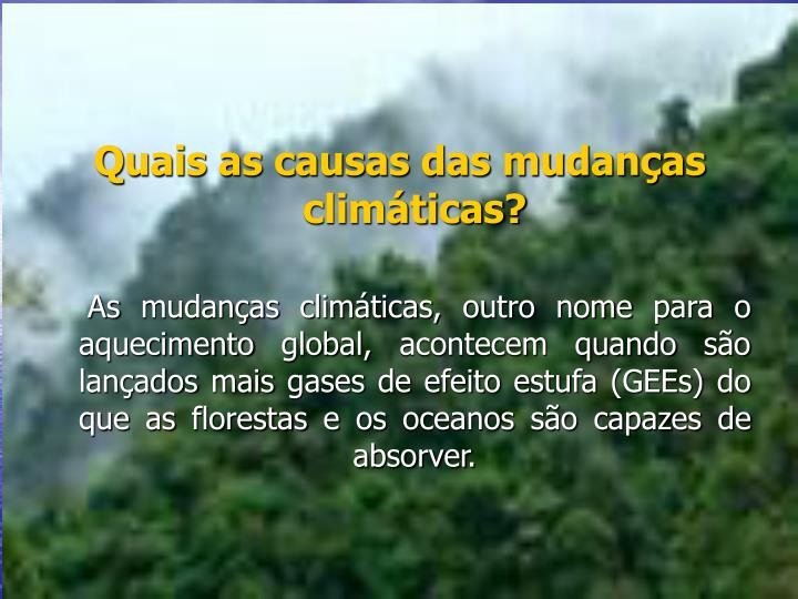 Quais as causas das mudanas climticas?
