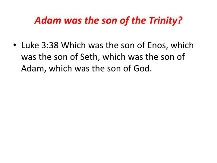 Adam was the son of the Trinity?
