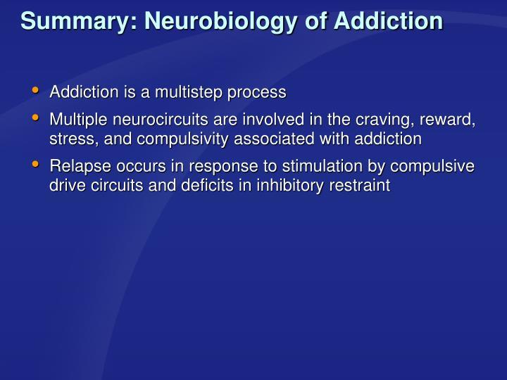 Summary: Neurobiology of Addiction