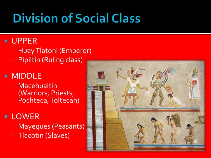Division of Social Class