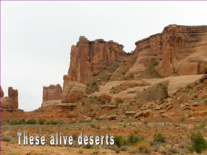 These alive deserts