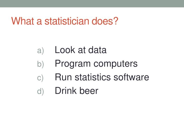 What a statistician does?