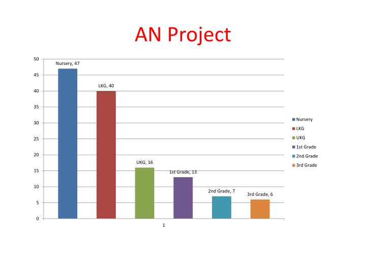 AN Project