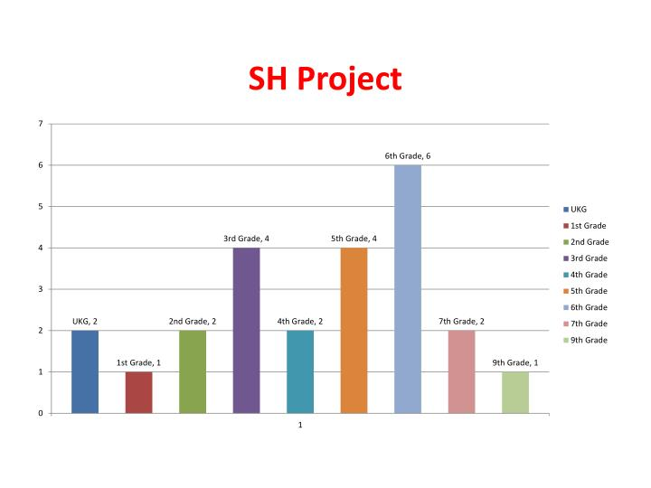 SH Project