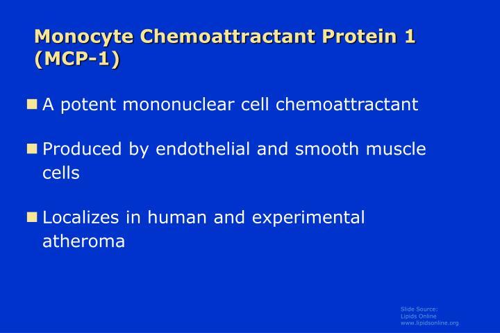 Monocyte Chemoattractant Protein 1