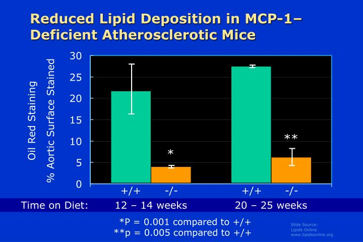 Reduced Lipid Deposition in MCP-1–Deficient Atherosclerotic Mice