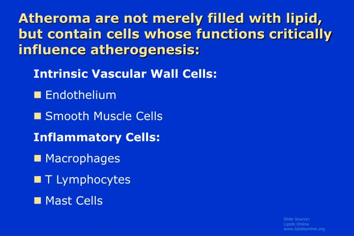 Atheroma are not merely filled with lipid, but contain cells whose functions critically influence atherogenesis: