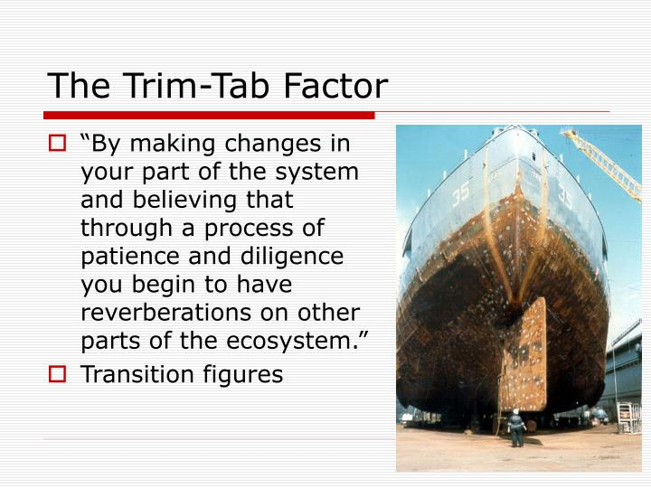 The Trim-Tab Factor