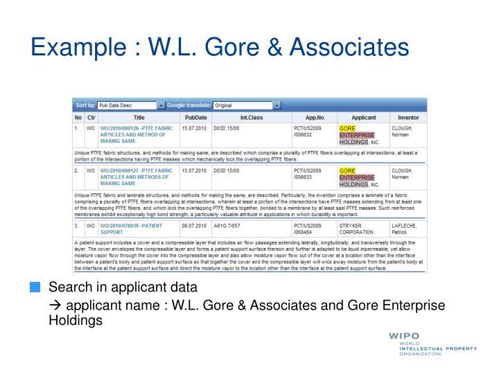 Example : W.L. Gore & Associates