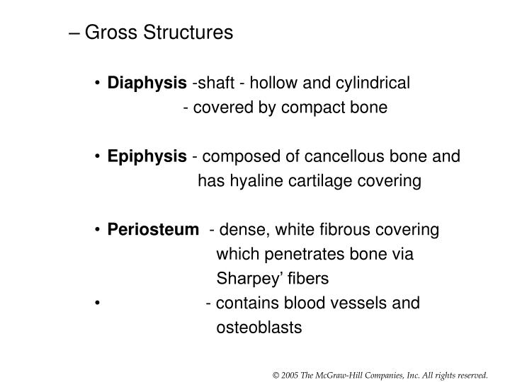 Gross Structures