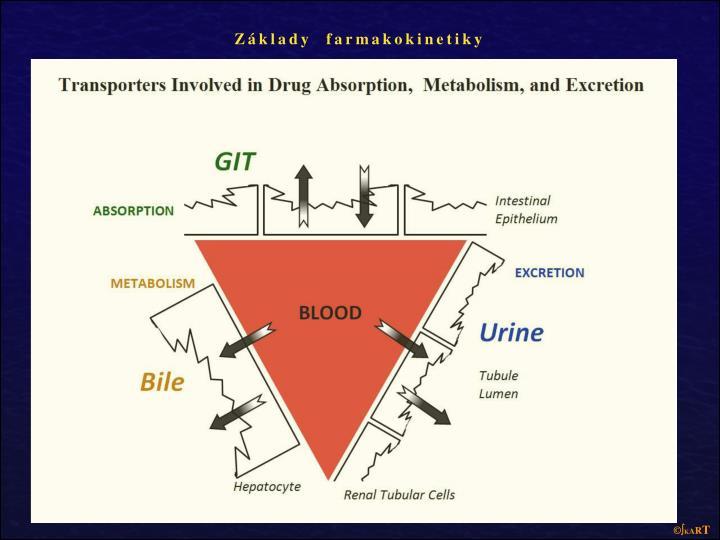 Základy  farmakokinetiky