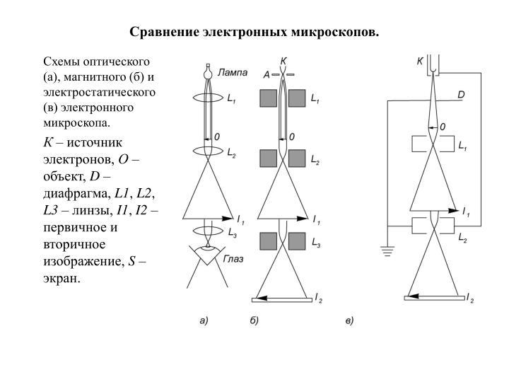 Сравнение электронных микроскопов.