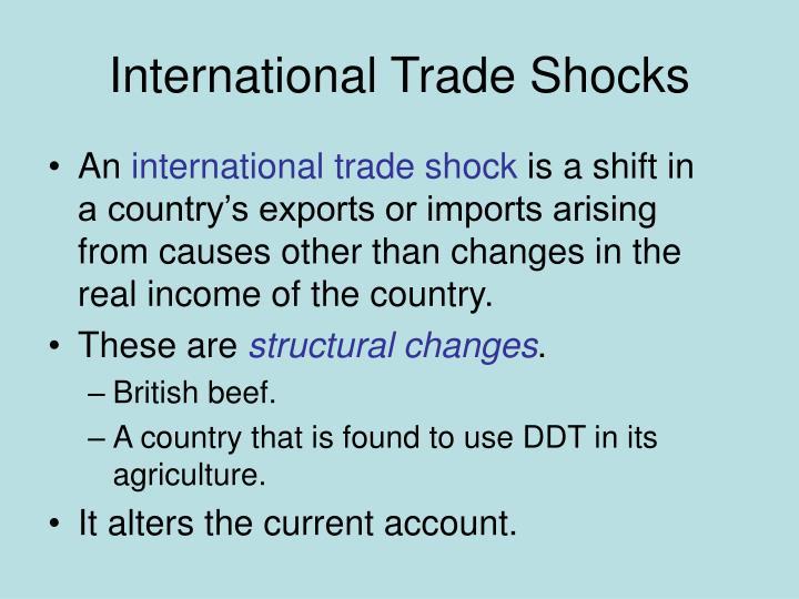 International Trade Shocks