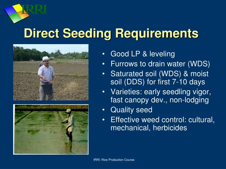 Direct Seeding Requirements