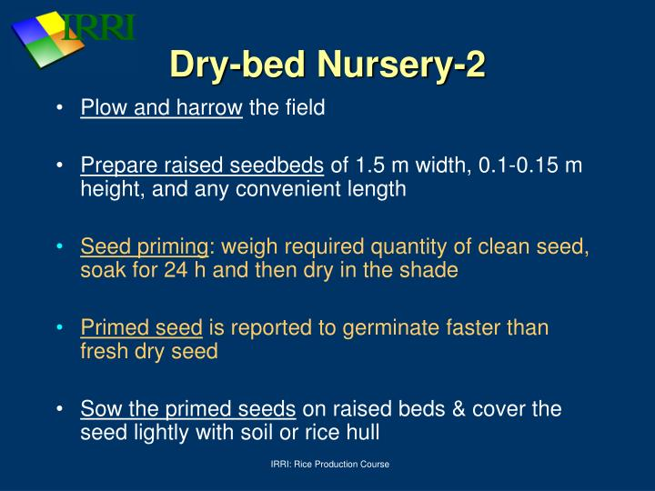 Dry-bed Nursery-2