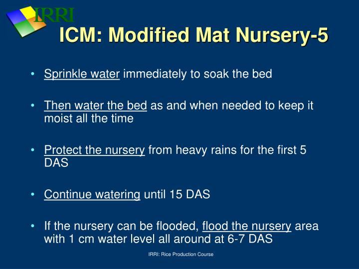 ICM: Modified Mat Nursery-5