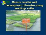 manure must be well decomposed otherwise young seedlings suffer