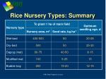 rice nursery types summary
