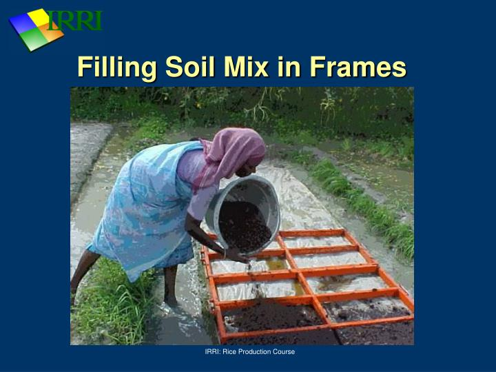 Filling Soil Mix in Frames