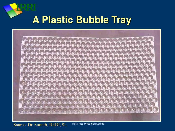 A Plastic Bubble Tray