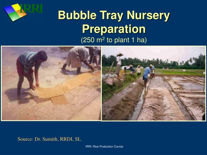 Bubble Tray Nursery Preparation
