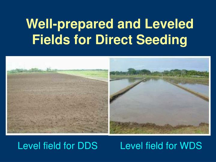 Well-prepared and Leveled Fields for Direct Seeding