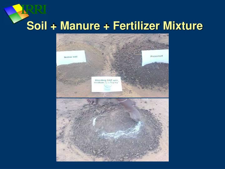 Soil + Manure + Fertilizer Mixture