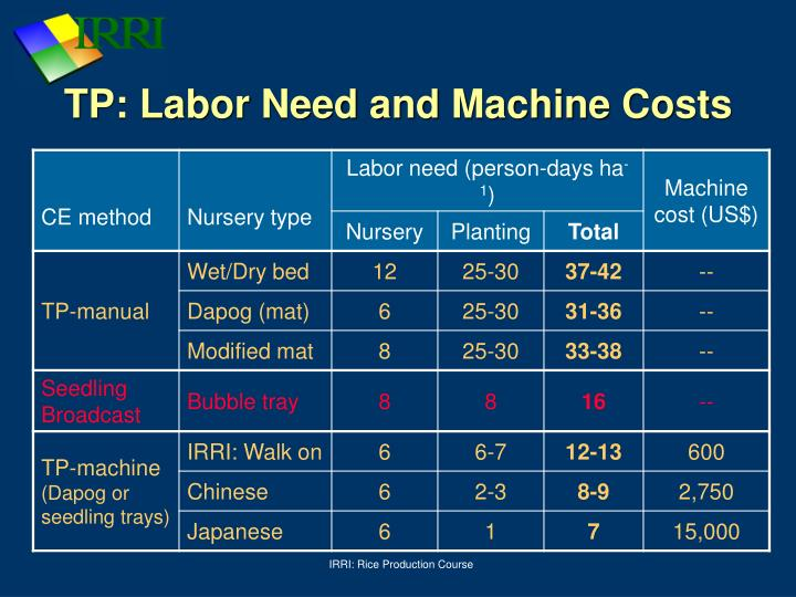 TP: Labor Need and Machine Costs