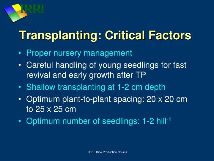 Transplanting: Critical Factors