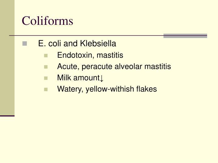 Coliforms