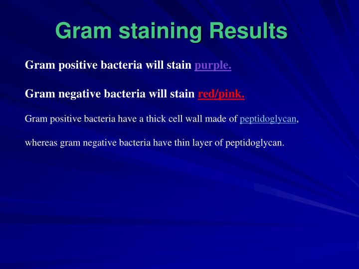 Gram staining Results
