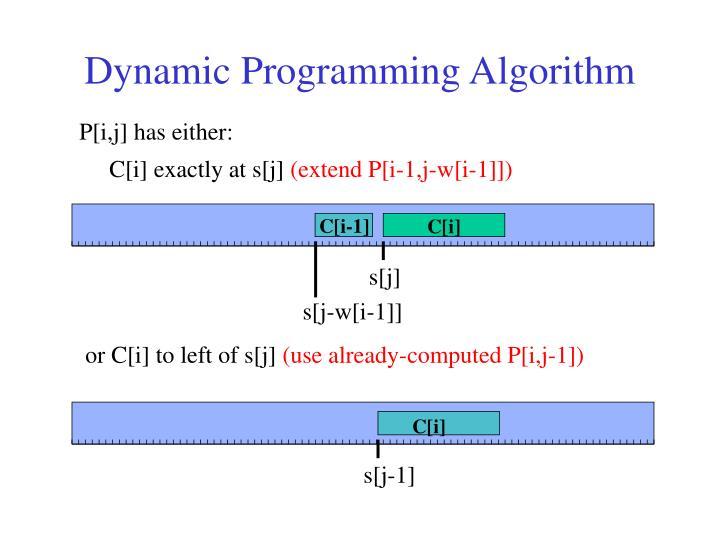 Dynamic Programming Algorithm
