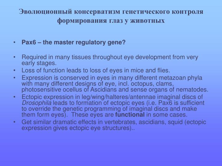 Эволюционный консерватизм генетического контроля формирования глаз у животных